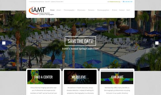 Web Design Lakeland FL - IAMT